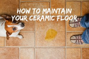 Our Tips for Maintaining Ceramic Tile and Cleaning Joints